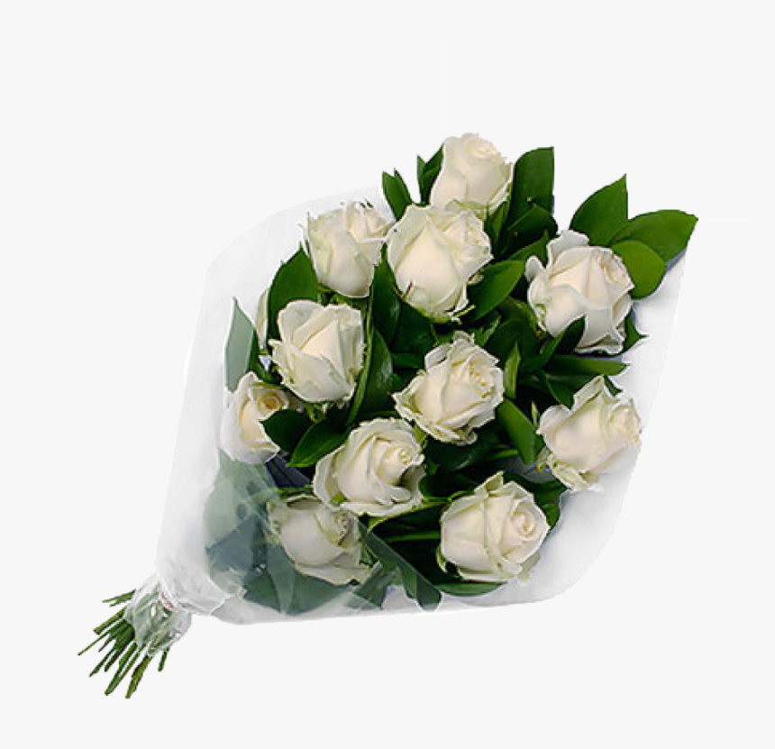 White Roses Png Background Clipart - Teddy Bear With White Rose, Transparent Png, Free Download