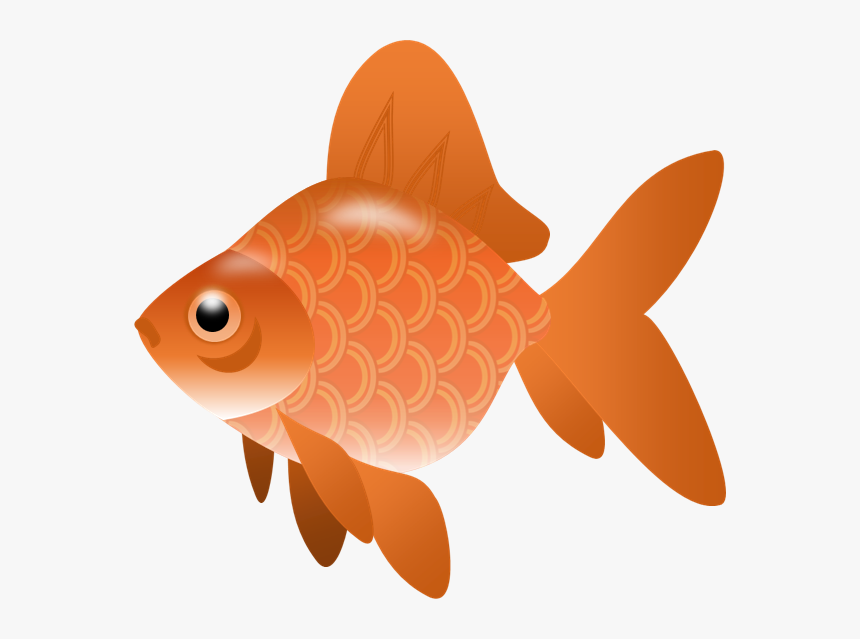 Fish,illustration - Fish Clip Art Transparent, HD Png Download, Free Download