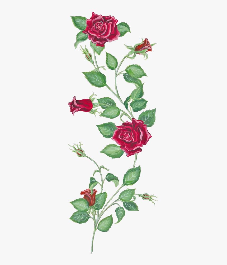Transparent Rose Vine Png - Rose And Vine Tattoo, Png Download, Free Download