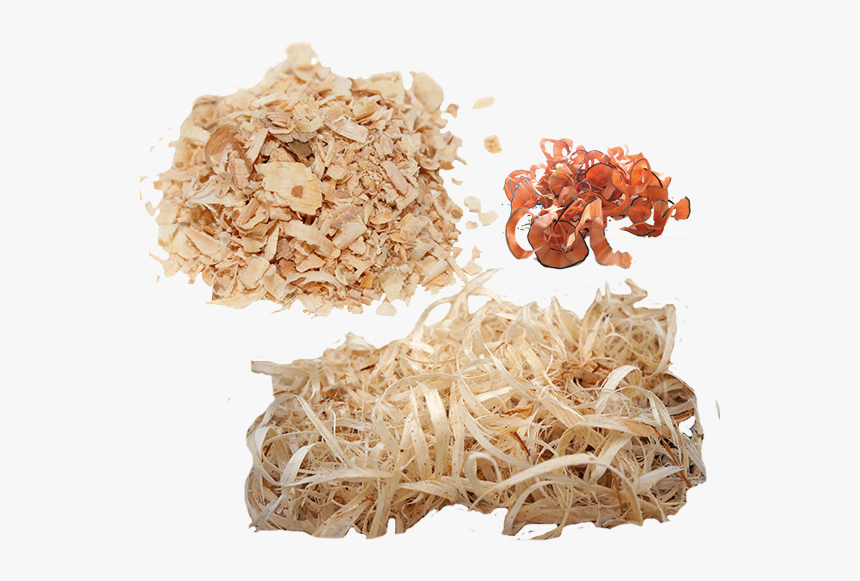 Wood Shavings Png, Transparent Png, Free Download