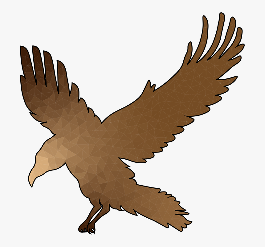 Crow, Flight, Bronze, Wings, Raven, Bird, Feather - Buzzard, HD Png Download, Free Download