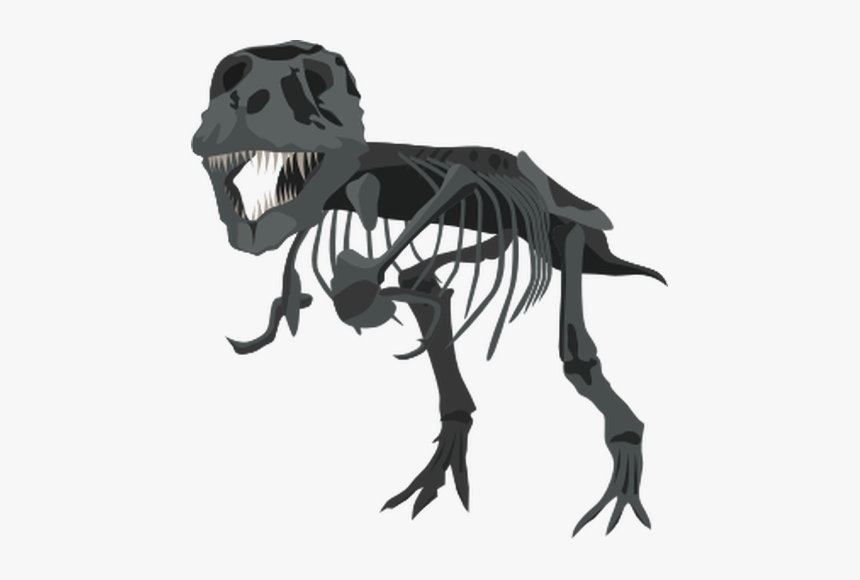 Tyrannosaurus Rex Skeleton Vector Image - Skeleton Dinosaurus Vectors, HD Png Download, Free Download