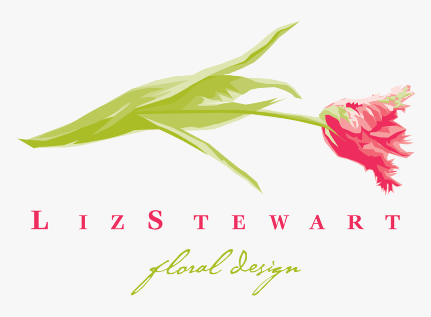 Lizstewartlogo Clear Bg, HD Png Download, Free Download