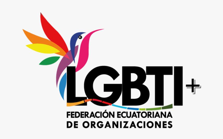 Federacion Ecuatoriana De Organizaciones Lgbt - Graphic Design, HD Png Download, Free Download