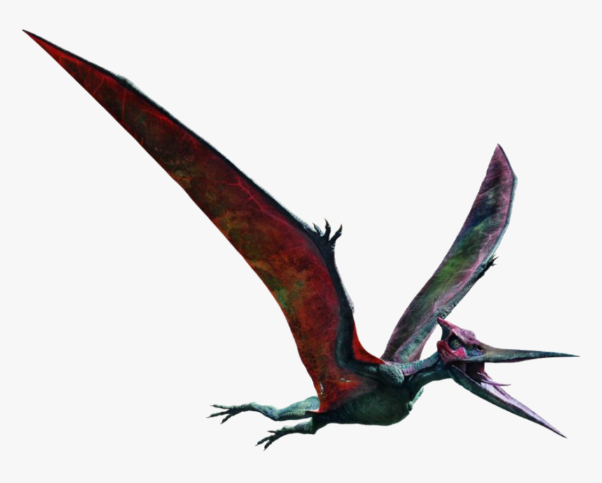 Pteranodon In Dinosaurs Jurassic Park Jurassic World Jurassic World Fallen Kingdom Pteranodon Hd Png Download Kindpng You can also upload and share your favorite jurassic world wallpapers. pteranodon in dinosaurs jurassic park