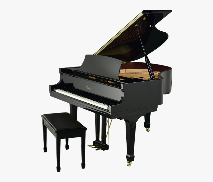 Grand Piano Price Philippines, HD Png Download, Free Download