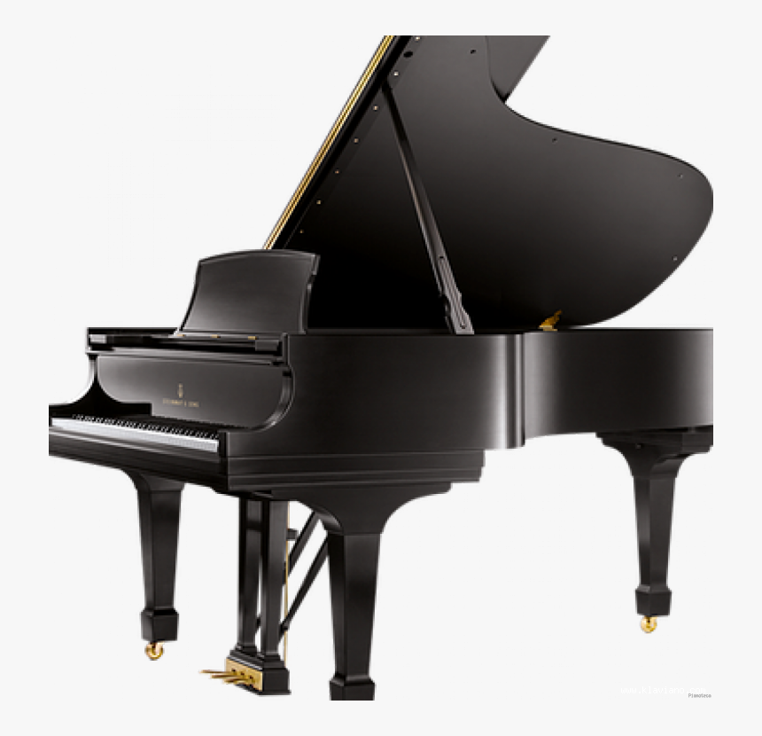 Steinway & Sons D-274, Toronto, Canada - Pianoforte A Coda Steinway & Sons Prezzo, HD Png Download, Free Download