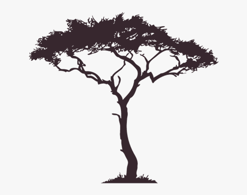 Tree Silhouette Shadow Nightime Surrealism Overlay African Tree Clipart Hd Png Download Kindpng