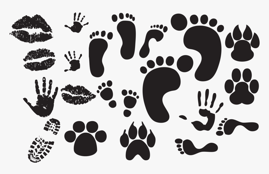 feet vector free download hd png download kindpng feet vector free download hd png