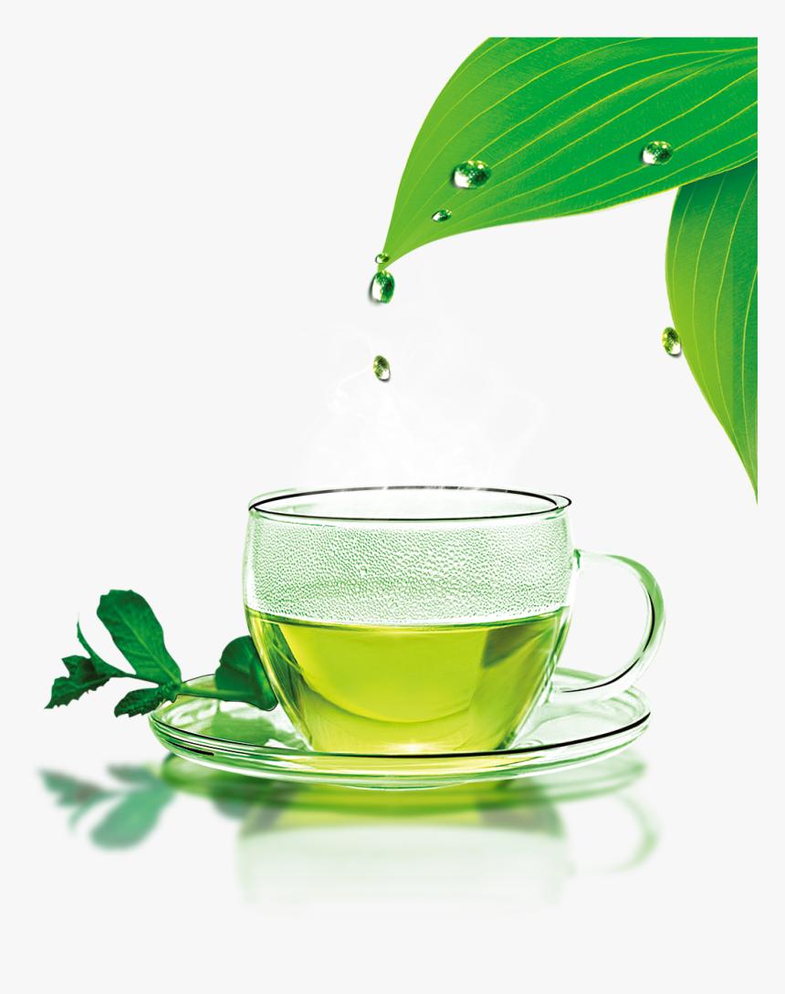 Green Tea Png Download Image - Hot Cup Of Green Tea, Transparent Png, Free Download