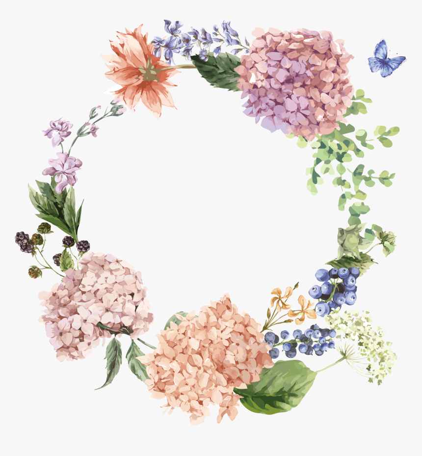 Flower Illustration The - Hydrangea Png, Transparent Png, Free Download