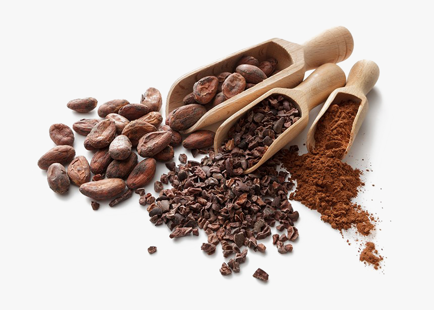 Cocoa Beans Png Hd - Cocoa Beans Png, Transparent Png, Free Download