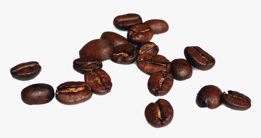 Caffeine,bean,jamaican Blue Mountain Coffee,java Coffee,food,cocoa - Coffee Bean High Resolution, HD Png Download, Free Download