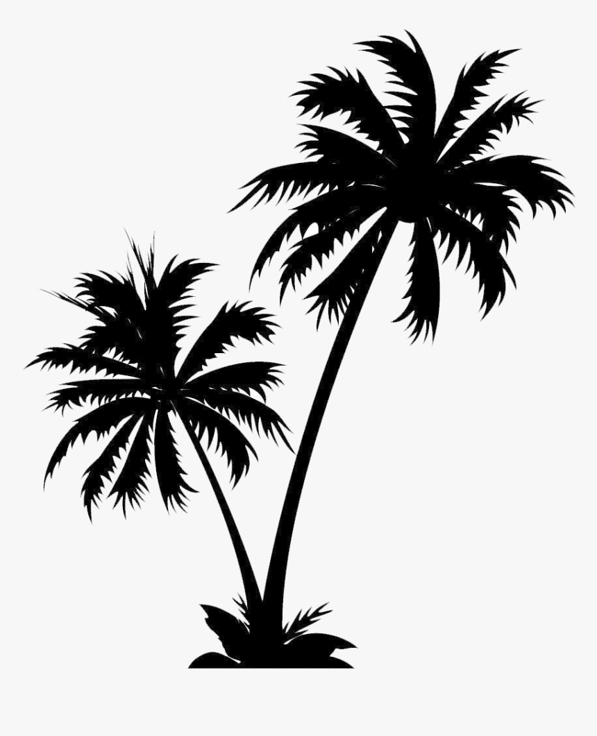 Isle Manage Specializes In White Palm Tree Png - Vector Palm Tree Png, Transparent Png, Free Download