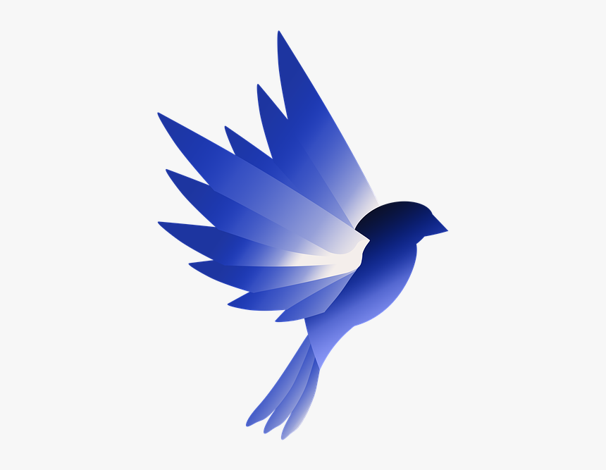 logo bird blue design wing animal swallow hd png download kindpng logo bird blue design wing animal