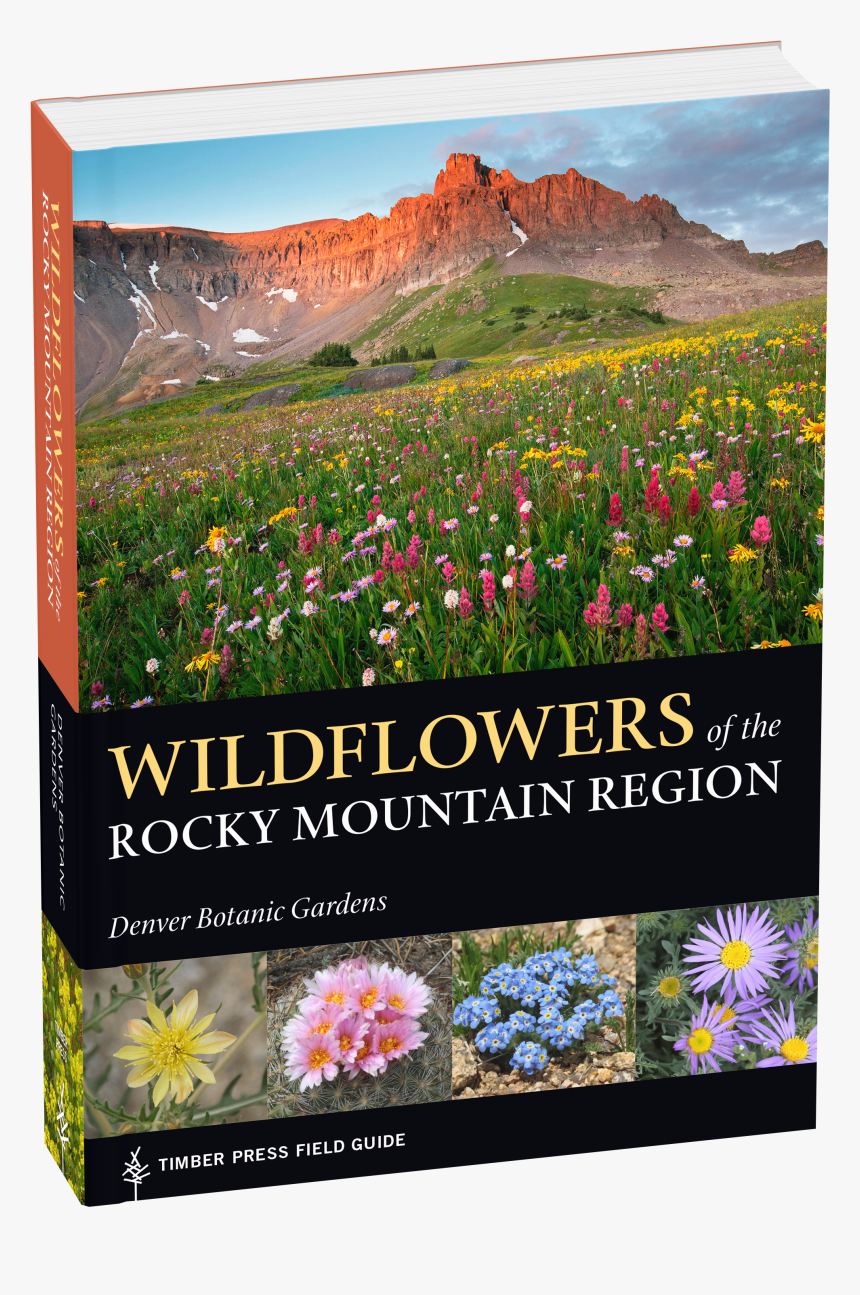 Cover - Rocky Mountain Wildflower Guide, HD Png Download, Free Download