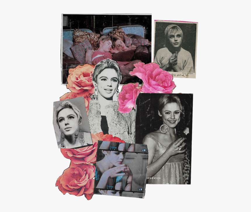 L O O P Y - Edie Sedgwick Collage, HD Png Download, Free Download