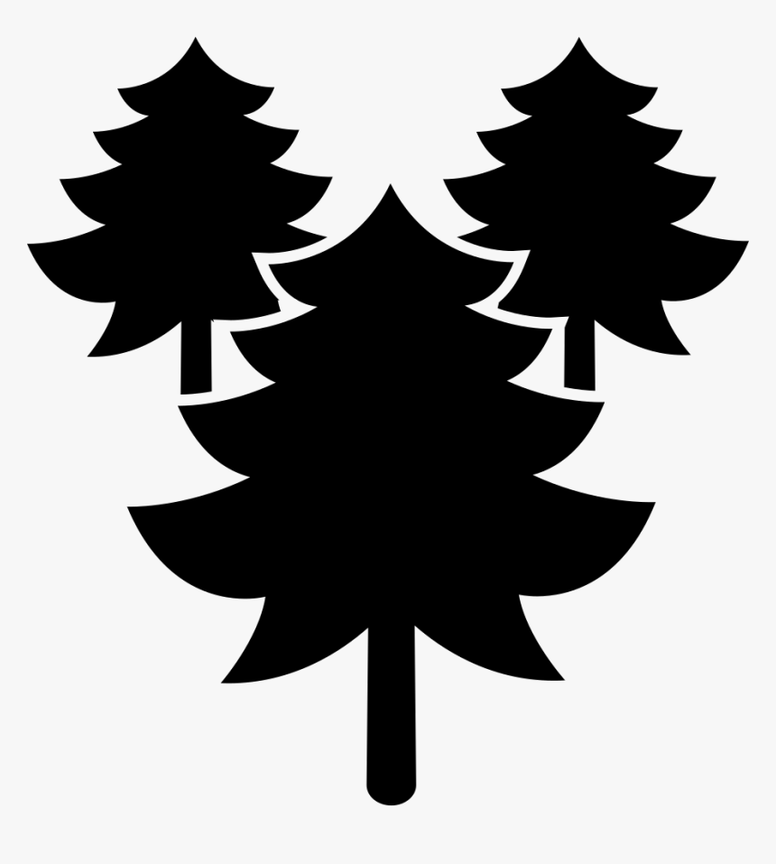Pines Trees Forest - Portable Network Graphics, HD Png Download, Free Download