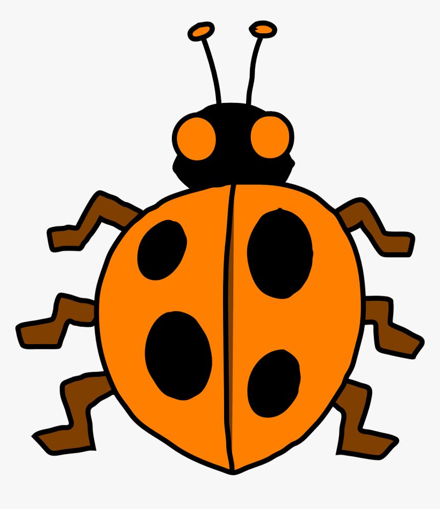 Gambar Binatang Kumbang Kartun HD Download Kindpng
