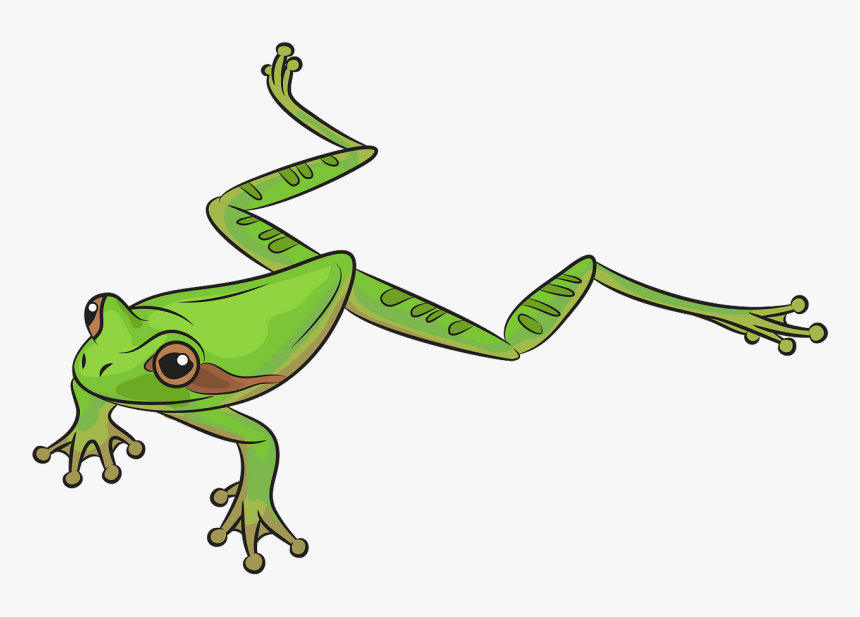 Frog Clipart, HD Png Download, Free Download