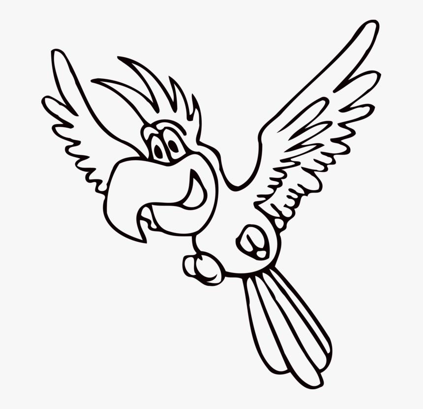 Amazon Parrot Beak Drawing Coloring Book Bird Cc0 Parrot Clipart Black And White Png Transparent Png Kindpng