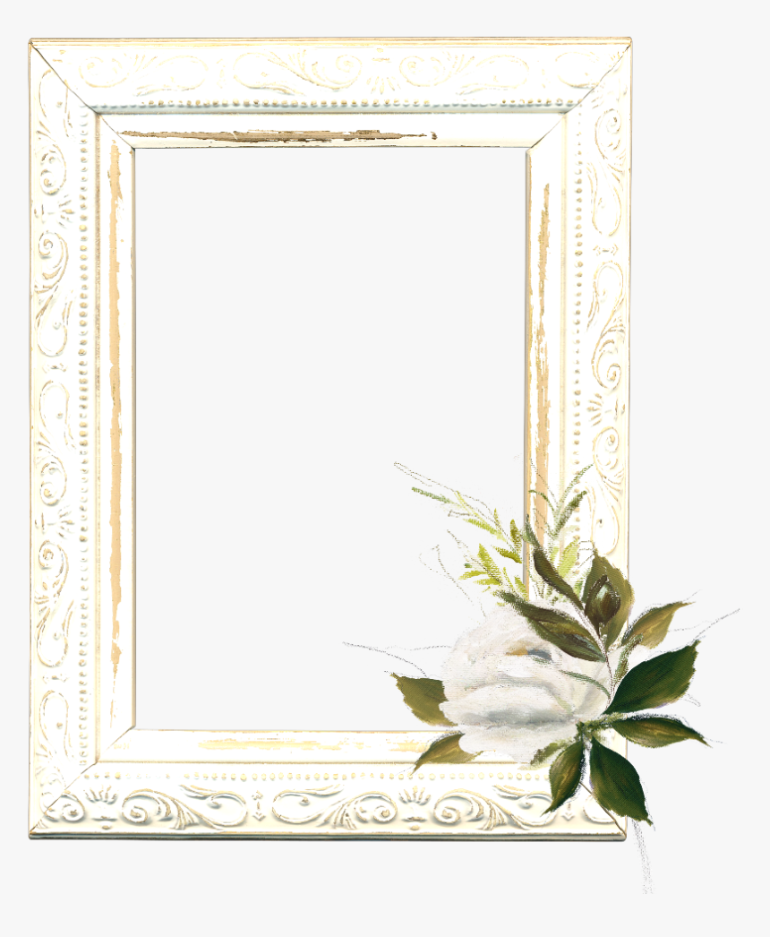 #mq #white #roses #frame #frames #border #borders - Jasmine, HD Png Download, Free Download