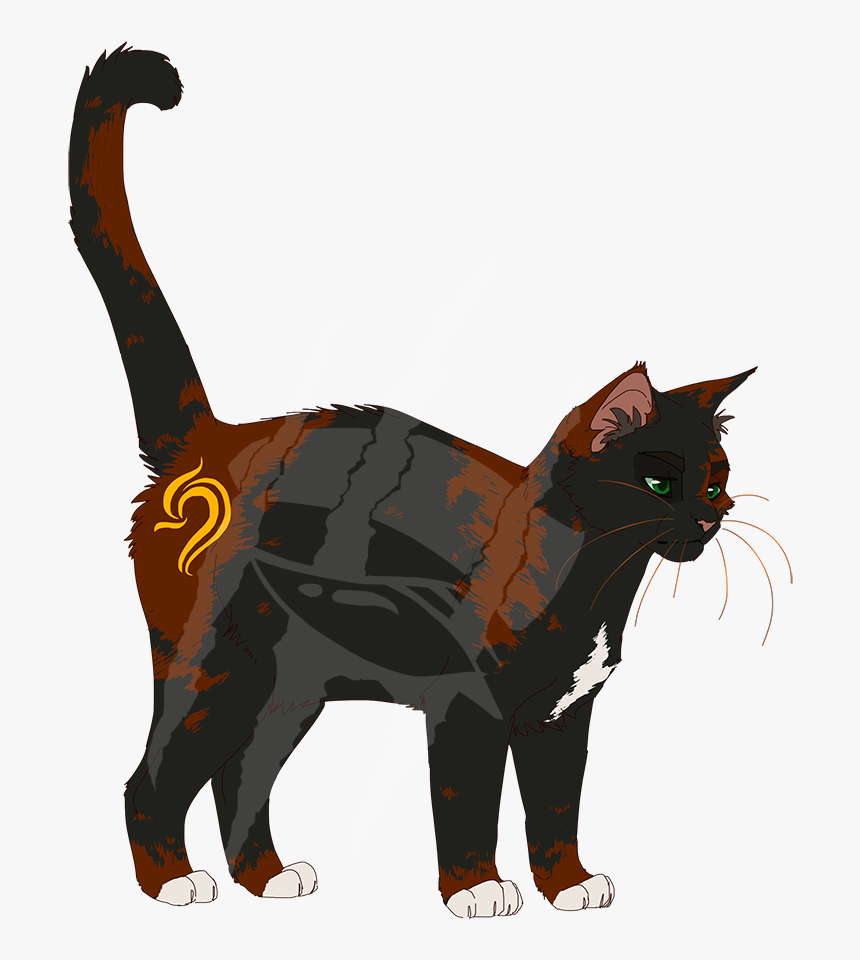 Domestic Short-haired Cat, HD Png Download, Free Download