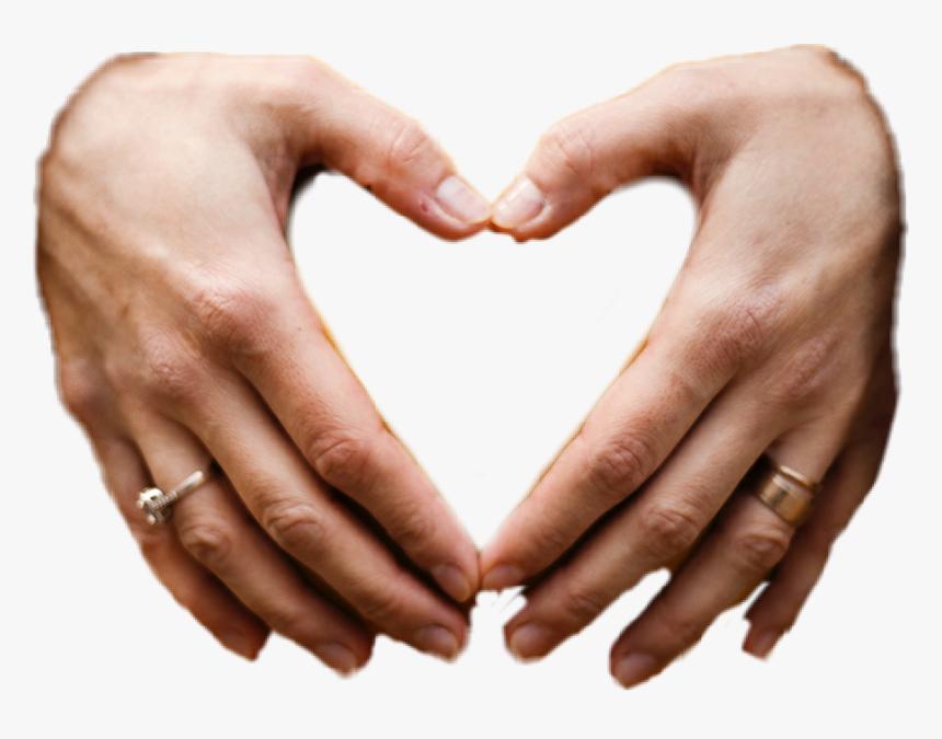 Sticker Heart Hands Love Hd Png Download Kindpng 693,000+ vectors, stock photos & psd files. sticker heart hands love hd png