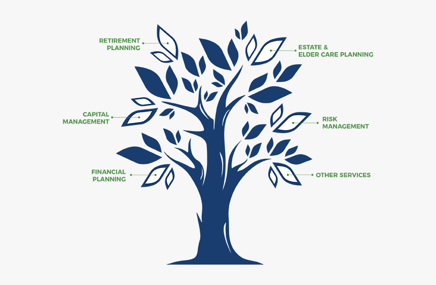 Financial Planning Tree, HD Png Download, Free Download