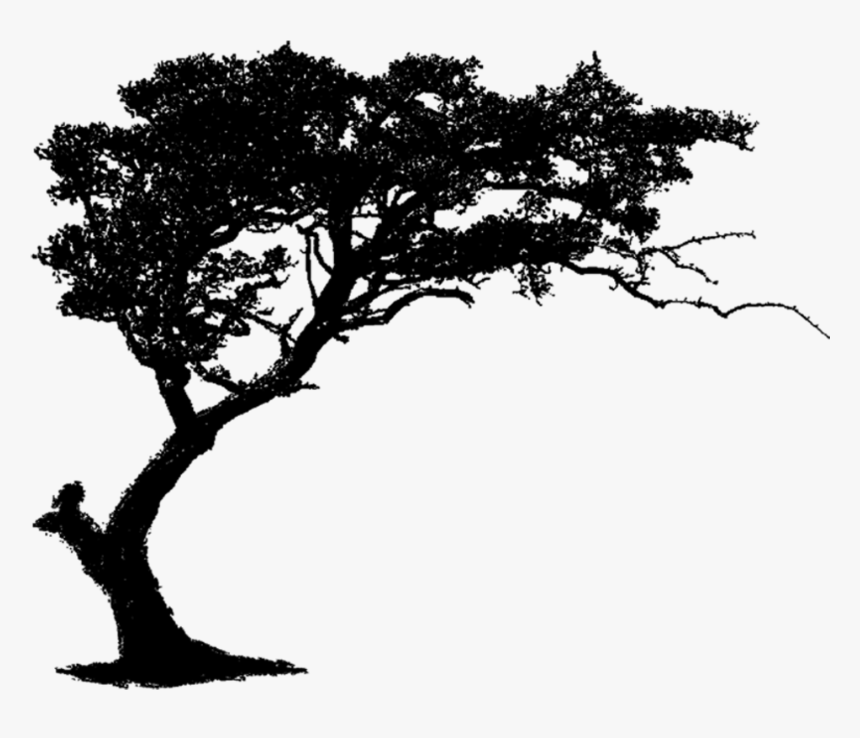Tree Brush Clip Art - Large Wall Sticker Tree, HD Png Download, Free Download