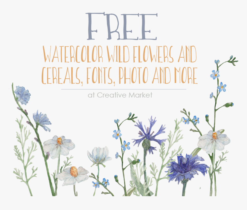 Free Watercolor Wildflowers, HD Png Download, Free Download