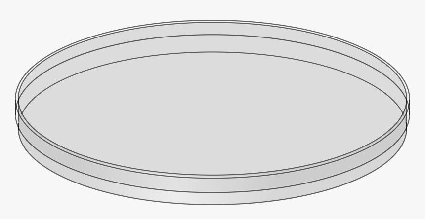 Transparent Dirty Dishes Png - Empty Petri Dishes, Png Download, Free Download