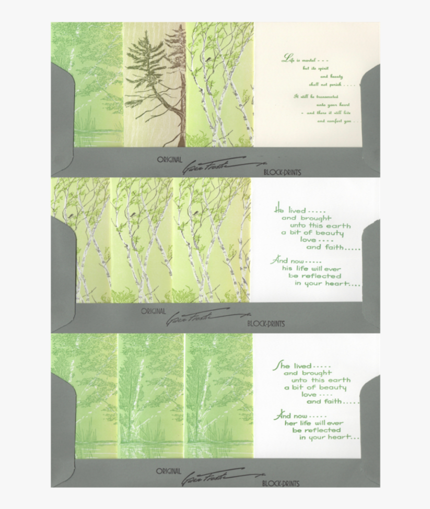 Tree, HD Png Download, Free Download
