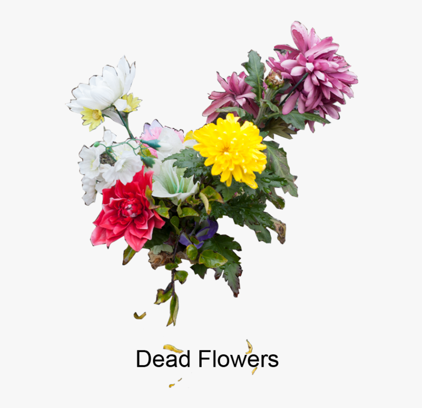 Bouquet , Png Download - Bouquet, Transparent Png, Free Download