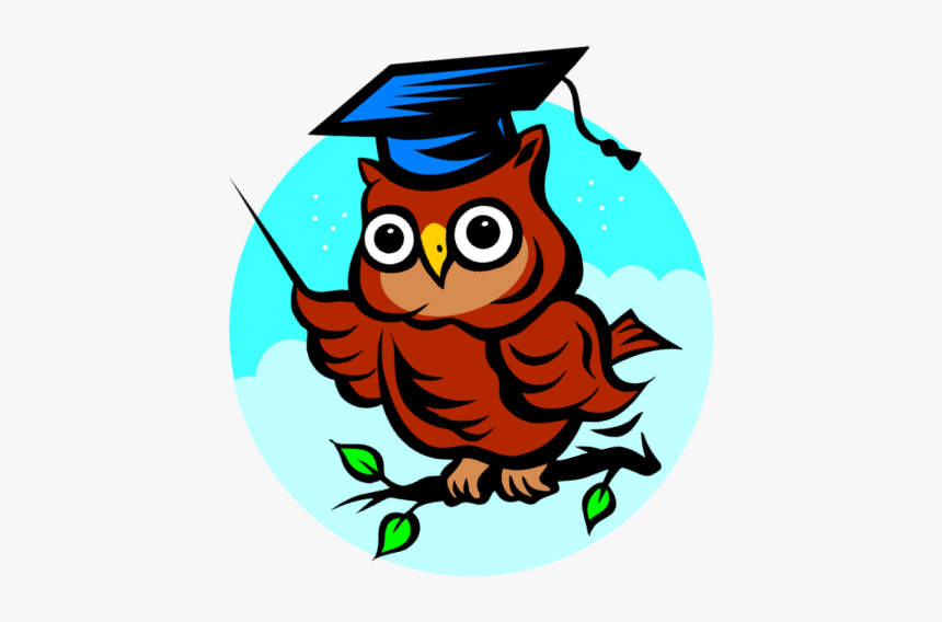 Fau Hs Rotary Scholar For January - Wise Owl, HD Png Download, Free Download
