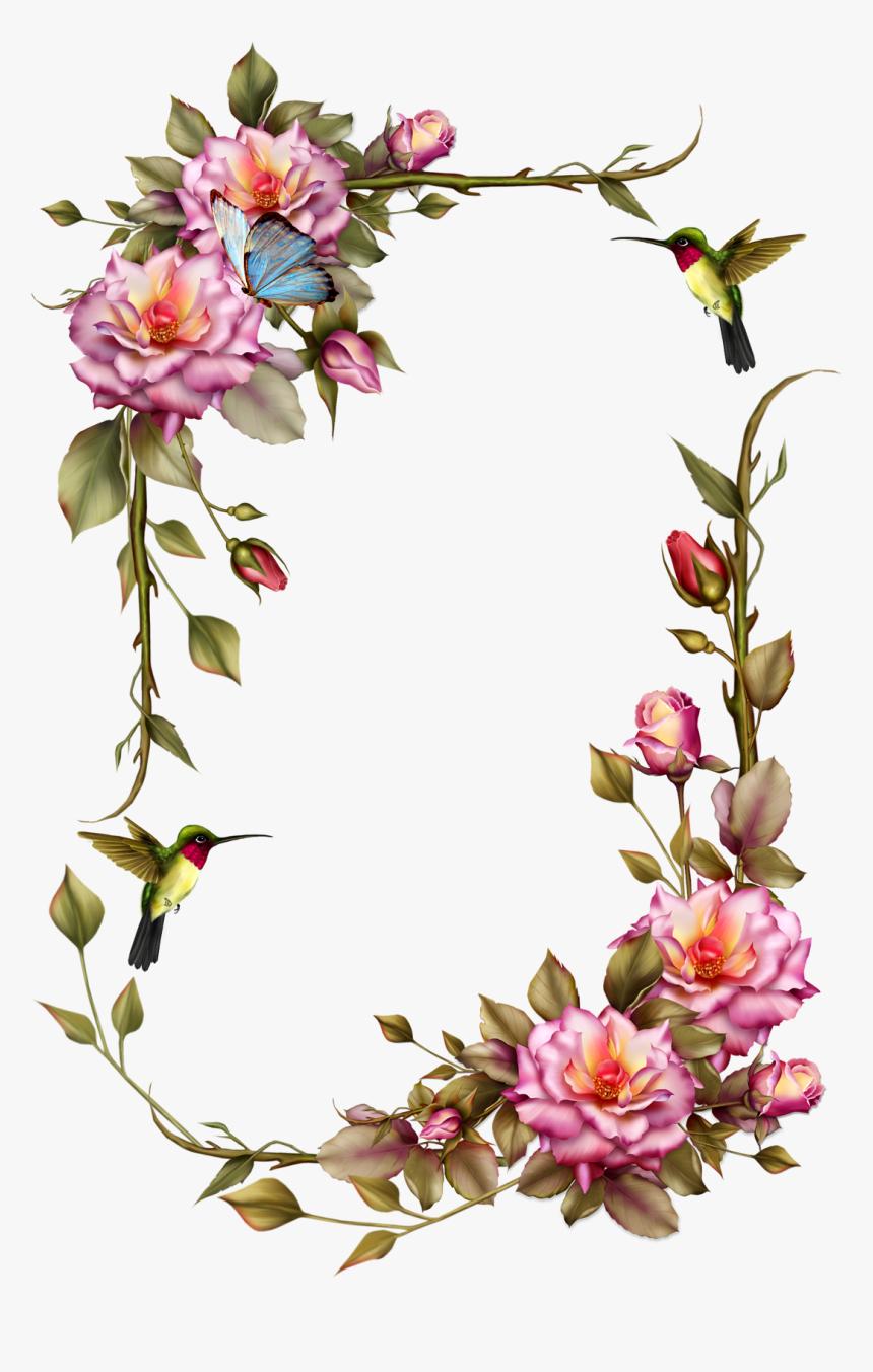 Transparent Rose Vine Png - Transparent Rose Frame Png, Png Download, Free Download