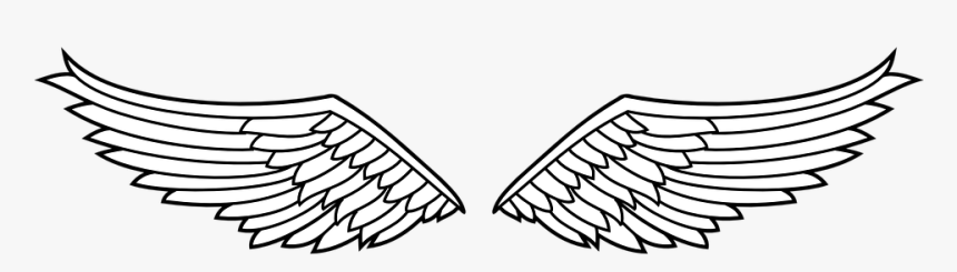 Lambang Sayap Elang Burung Simbol Dekorasi Gambar Sayap Burung Garuda Hd Png Download Kindpng