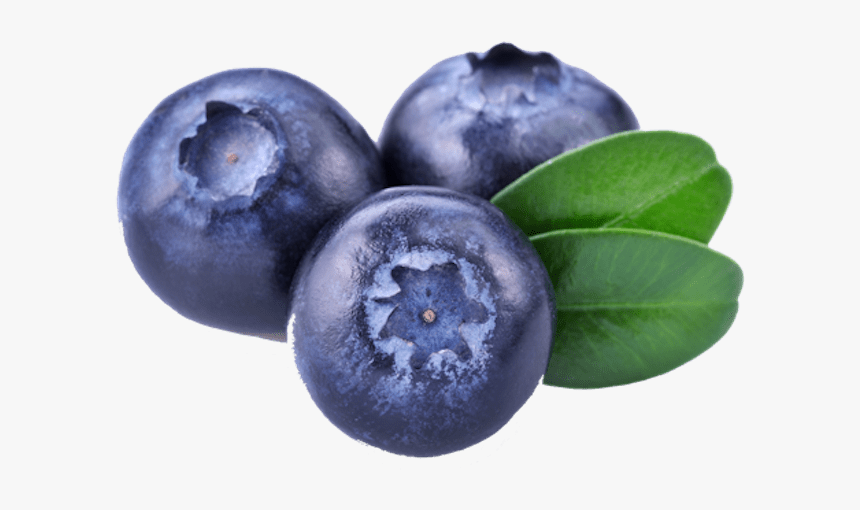 Three Blueberries - Bilberry Png, Transparent Png, Free Download