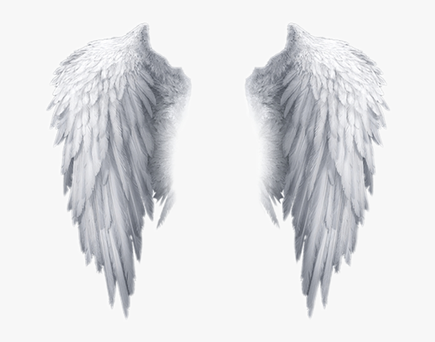 White Angel Wings Transparent Background, HD Png Download, Free Download
