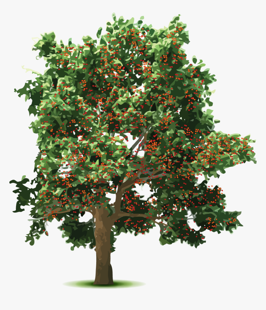 Free Tree Transparent Background Clip Art with No Background - ClipartKey