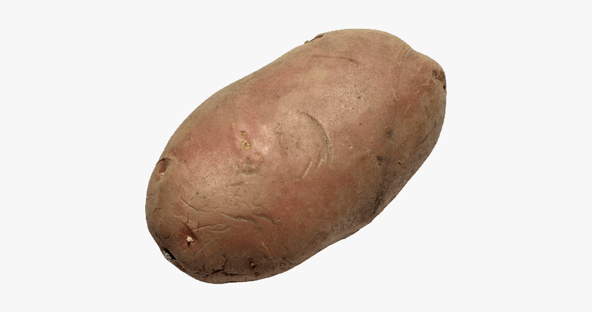 Yam - Transparent Potato Clear Background, HD Png Download, Free Download