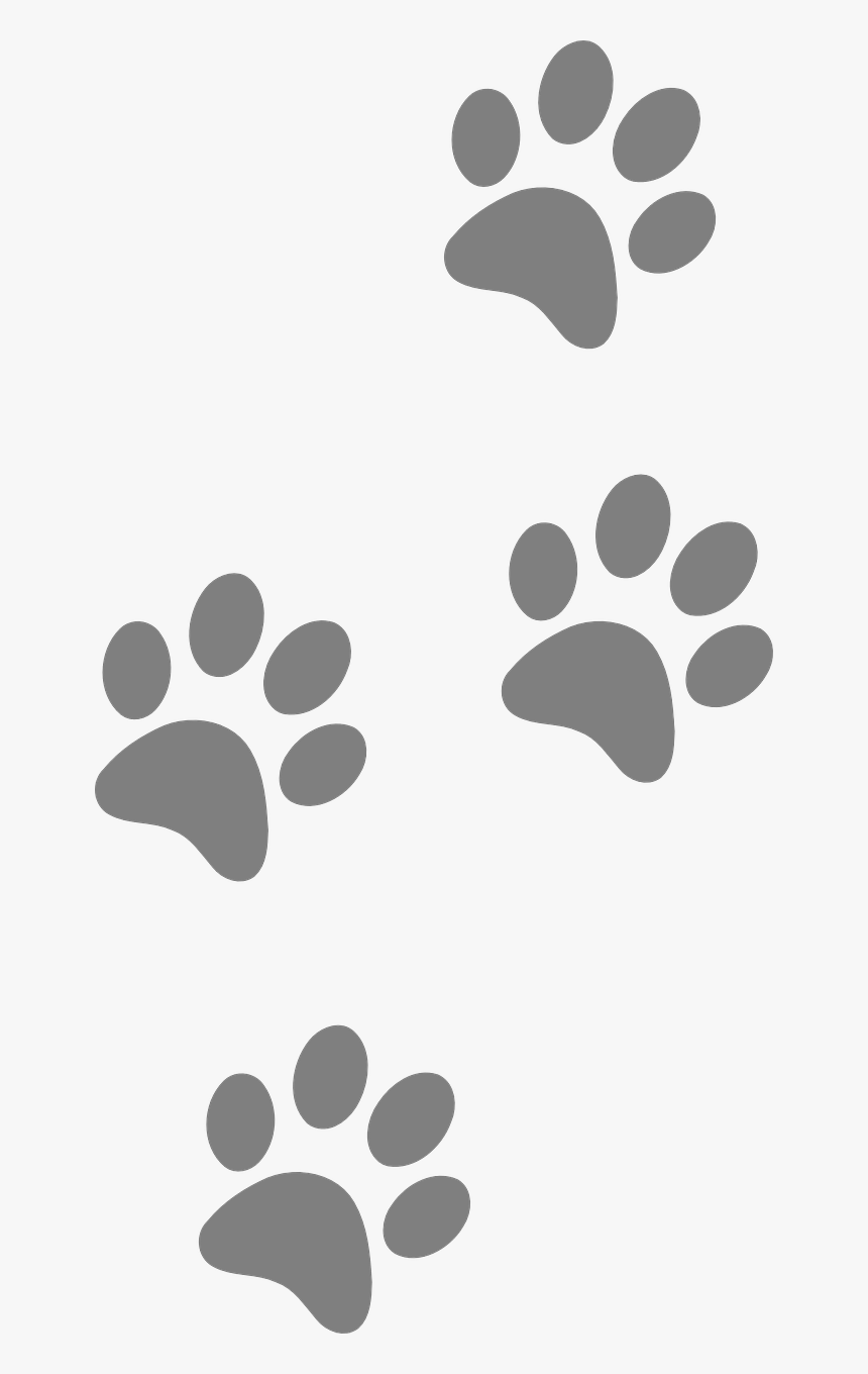 Footprints Animal Dog Paw Cat Silhouette Pattern Blue And Gold Paw Print Hd Png Download Kindpng Clip art tiger paw print. footprints animal dog paw cat
