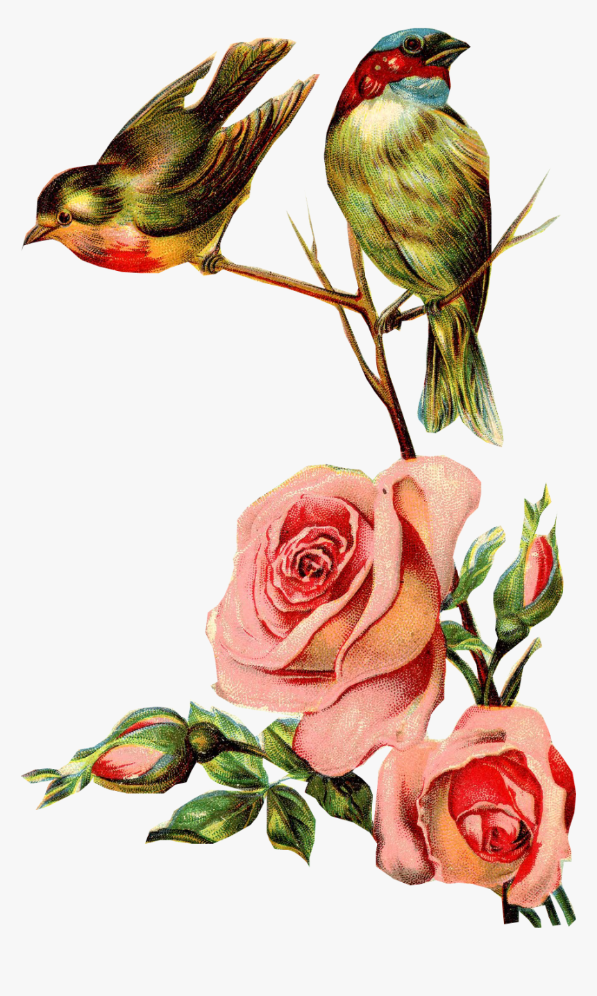 Flores Y Pajaritos Vintage Png, Transparent Png, Free Download