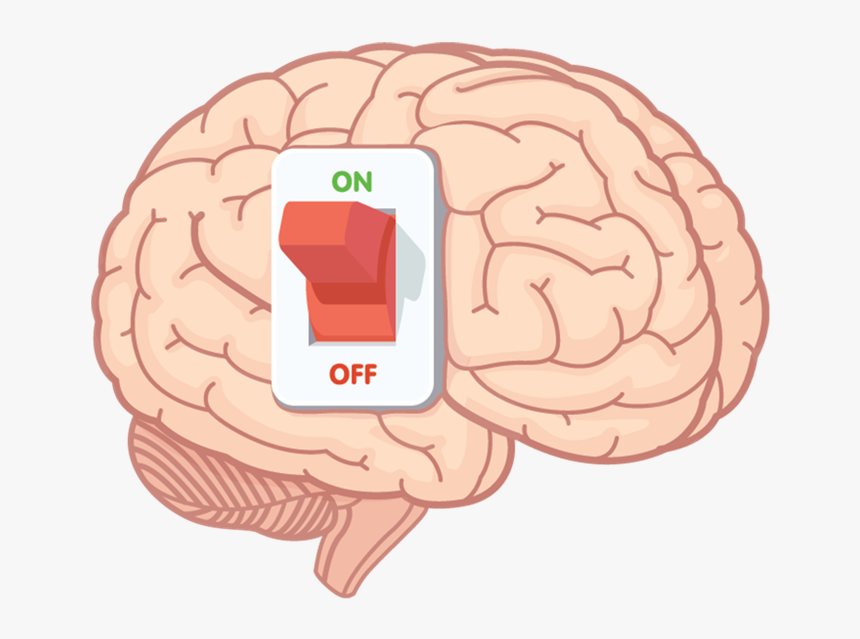 Switch On Brain, HD Png Download, Free Download