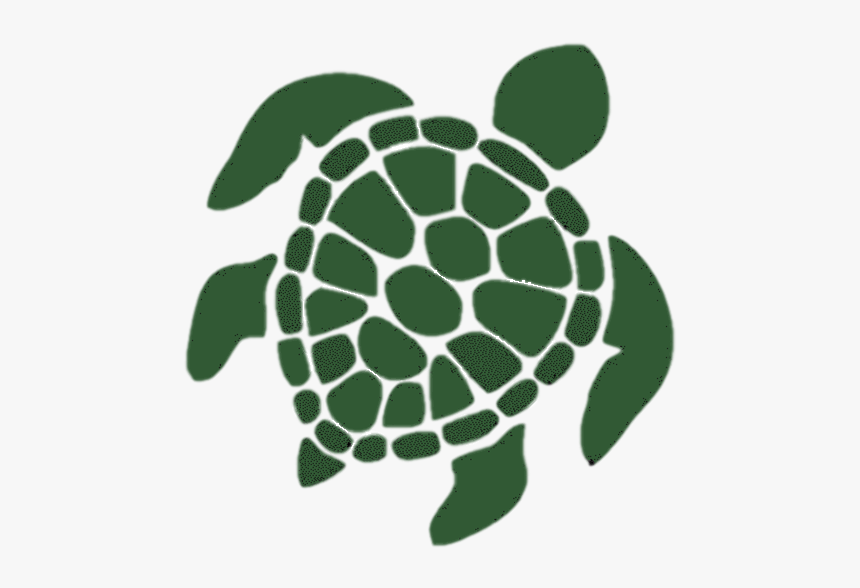 Html5 Icon - Black And White Sea Turtle Drawing, HD Png Download, Free Download