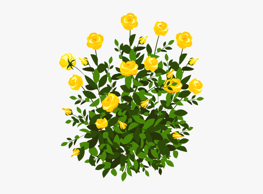 Yellow Rose Bush Png Clipart Picture - Flower Plant Png Clipart, Transparent Png, Free Download