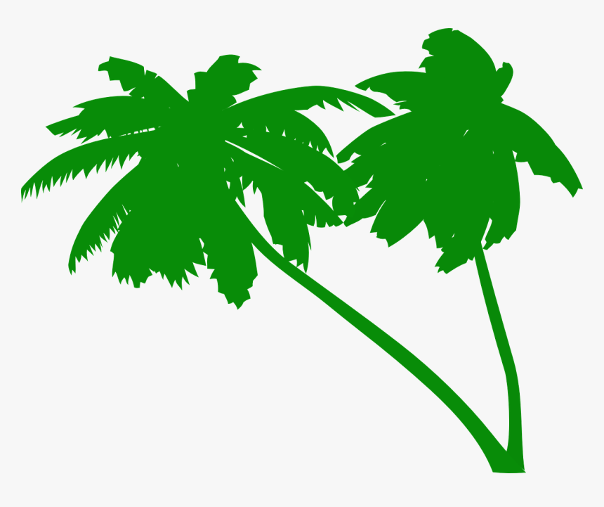 Palms, Coconut Tree, Coconut Palms, Tropical, Beach - Green Palm Tree Vector, HD Png Download, Free Download