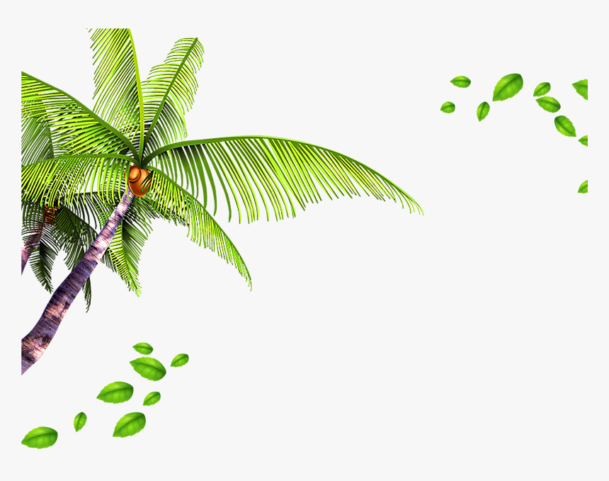 Palm Tree Leaves Background - Leaves Background Png, Transparent Png, Free Download