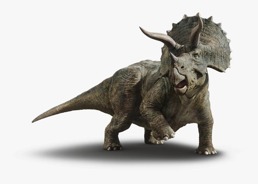 Dinosaur Png Free Pic Jurassic World Dinosaurs Triceratops Transparent Png Kindpng Dinosaurios jurassic world dibujo de dinosaurio parque jurásico diseño de personajes de fantasía jurasico animales prehistóricos imagenes compartidas criatura videojuegos. dinosaur png free pic jurassic world