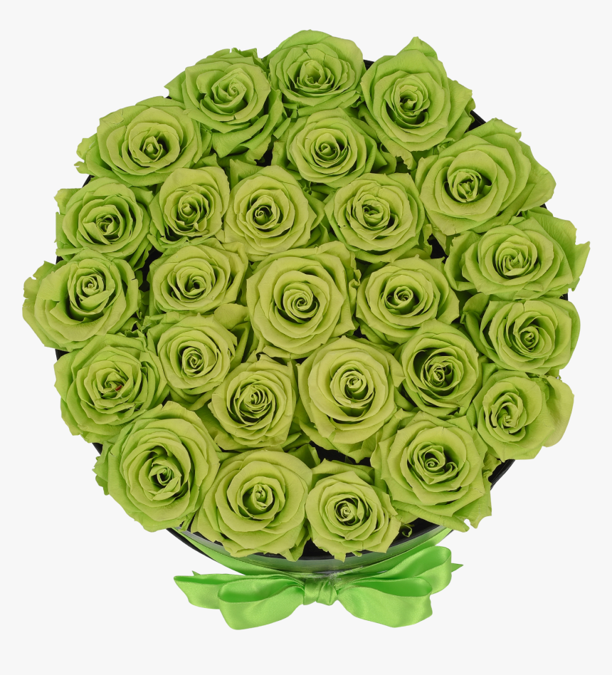 """Orb Grand Lime Green Roses""""  Class=""""lazyload Lazyload - Garden Roses, HD Png Download, Free Download"""